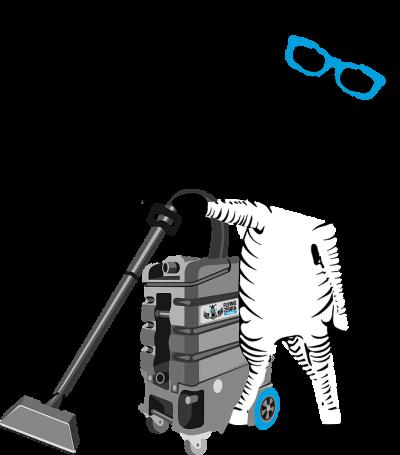 Flying Zebra Vacuuming